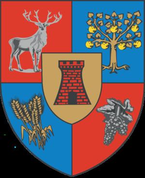 Satu Mare County - Image: Satu Mare county Co A