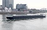 Schiff Tristan auf dem Rhein in Köln 2012 PD 2.JPG