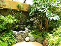 Schmetterlingshaus - panoramio.jpg