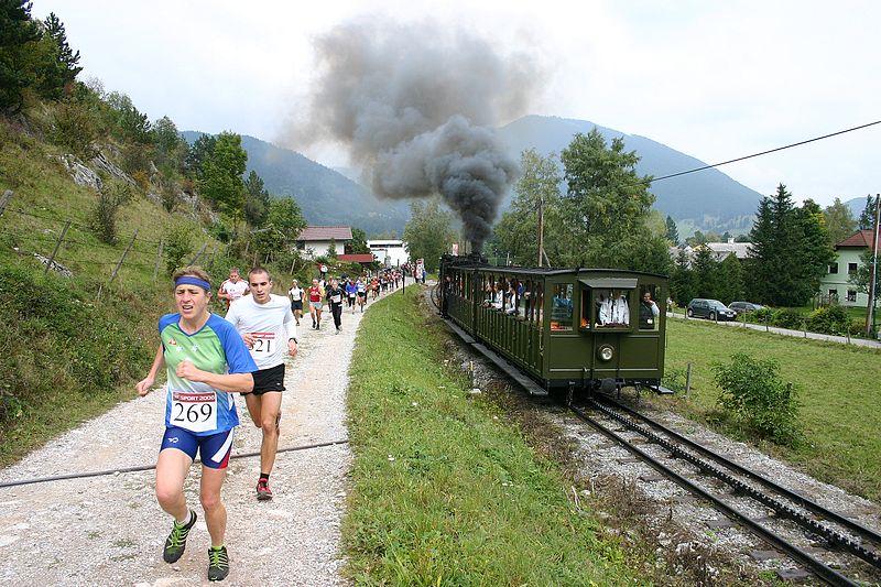 File:Schneeberglauf 2008 in Puchberg am Schneeberg (Bild1).jpg