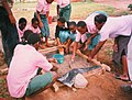 School children making slab at Mtomomondi Primary School (5372706306).jpg