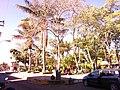 Sector 10, Santa Elena de Uairén, Bolívar, Venezuela - panoramio (10).jpg