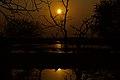 Setting sun at Bharatpur.jpg