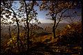 Shenandoah National Park SHEN9138.jpg