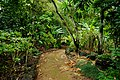 Side Trail (5216973756).jpg