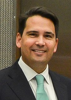 Simon Bridges New Zealand politician