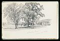 Sketchbook of New England and Pennsylvania Landscape and Marine Subjects MET APS1700.jpg