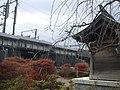 Small shrine on Tokaido Shinkansen side track in Yokohama.jpg