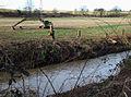 Smestow River at Ashwood, Staffordshire - geograph.org.uk - 658028.jpg