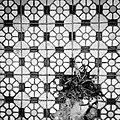 Snapshot, Jungli, Taoyuan, Taiwan, 馬祖新村, 中壢馬祖新村, 隨拍, 中壢, 桃園, 台灣 (15099318651).jpg