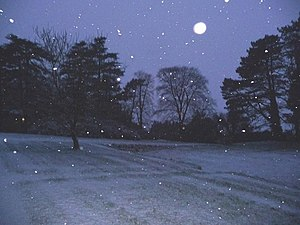 English: Snow falling in the early evening