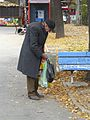Sofia 2008 (4610403793).jpg