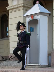 Soldier in front of Royal Palace in Oslo.jpg