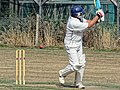 Southwater CC v. Chichester Priory Park CC at Southwater, West Sussex, England 005a.jpg