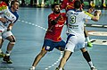 Spain vs Slovenia at 2013 World Handball Championship (10).jpg