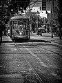 St charles streetcar (48200148566).jpg