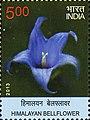 Stamp of India - 2013 - Colnect 476598 - Himalayan Bellflower.jpeg