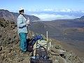 Starr-011114-0033-Coprosma montana-habitat with Kim-South rim HNP-Maui (24175740889).jpg