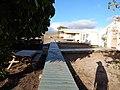 Starr-141218-3145-Cordia subcordata-habit with volunteer huts and boardwalks-Honokanaia-Kahoolawe (25156583321).jpg