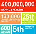 State of Arabic.Source-Hattery Labs.jpg