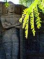 Statue of Load Buddha at Galvihara Temple, Polonnaruwa.jpg