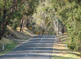 Steels Creek Road.jpg