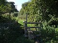 Stile near Thorpe Farm, Skendleby - geograph.org.uk - 554346.jpg