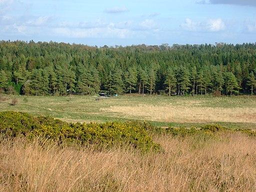 Stockhill Car Park - geograph.org.uk - 1720286