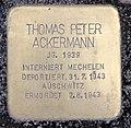 Stolperstein Sächsische Str 62 (Wilmd) Thomas Peter Ackermann.jpg