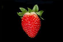 Strawberry BNC.jpg