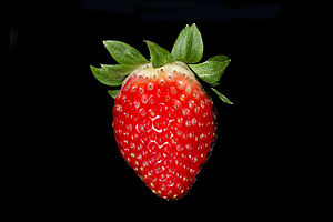 Strawberry - Strawberry fruit