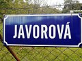 Street Javorová in Rožnov pod Radhoštěm.jpg
