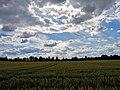 Summer sky - Flickr - Stiller Beobachter (3).jpg
