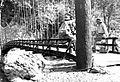 Suspension bridge, Northeast India, 1952 (16802123127).jpg