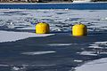 Sweden - Stockholm 17 - icy channel & buoys (7089561439).jpg