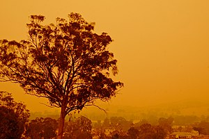Bushfires in Australia - Looking towards the town Swifts Creek, Victoria, in December 2006 during the Victorian Alpine Fires
