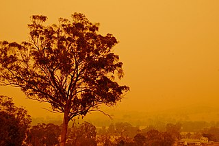 Bushfires in Australia Frequently occurring wildfire events