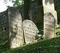 Třebíč Jüdischer Friedhof - Grabsteine 7.jpg