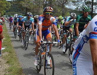 2012 Tour de France, Stage 11 to Stage 20 - Image: TDF2012 13e étape peloton 12 (cropped)