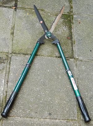 Hedge trimmer - Image: Taille haie