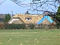 Thatching on Brewers Lane - geograph.org.uk - 368825.jpg