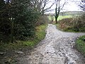 The Clwydian Way-Taith Clwyd and Ancient Tracks - geograph.org.uk - 309539.jpg