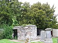 The Fortingall Yew - geograph.org.uk - 846602.jpg