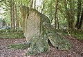 The Hoar Stone near Fulwell Oxfordshire - geograph.org.uk - 1462688.jpg