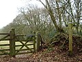The Quantock Greenway at Walford's Gibbet - geograph.org.uk - 1766922.jpg