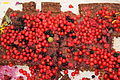 The Scandinavian Permaculture festival of 2013 - 13 Raspberry cake 25 years annivarsy.JPG