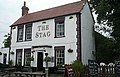 The Stag - geograph.org.uk - 854500.jpg