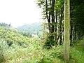 The upper Afon Wen valley - geograph.org.uk - 542640.jpg