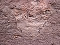 Theropod dinosaur footprint in sandstone (Kayenta Formation or Navajo Sandstone, Lower Jurassic; Potash-Poison Spider dinosaur tracksite, Williams Bottom, west of Moab, Utah, USA) 42 (32376748663).jpg