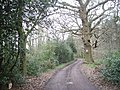 This way to the stables - geograph.org.uk - 747998.jpg
